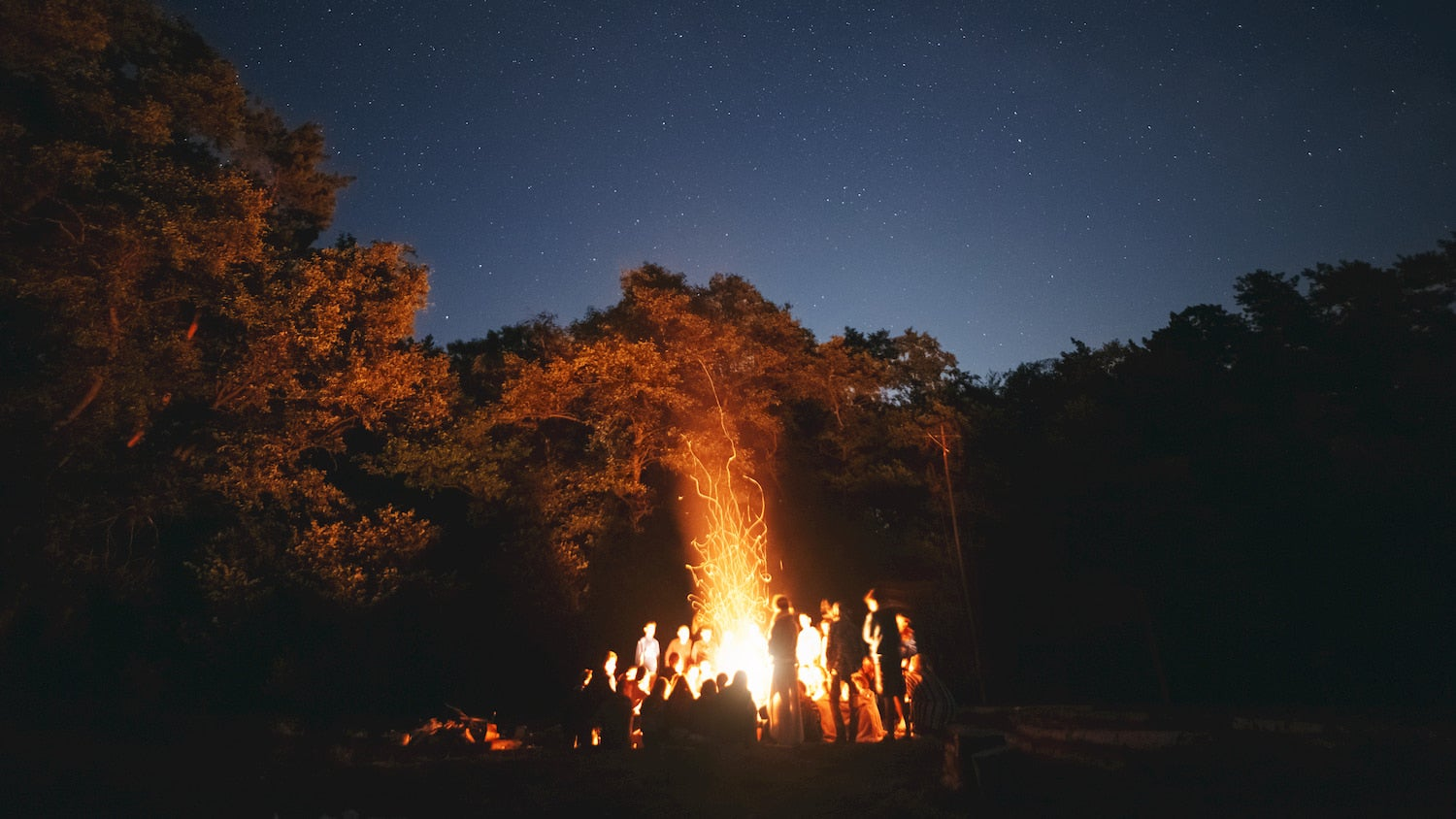 large group surrounding a bonfire in the woods