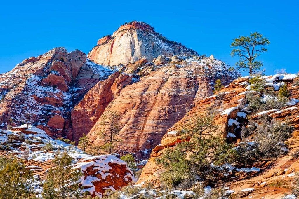 winter landscape of Zion National Park in winter