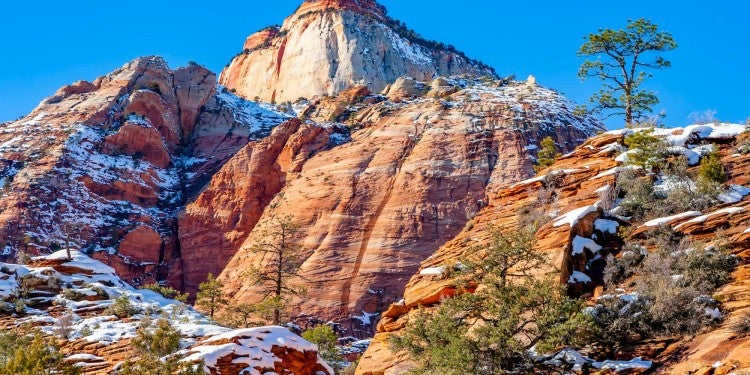 winter landscape of Zion National Park in winter