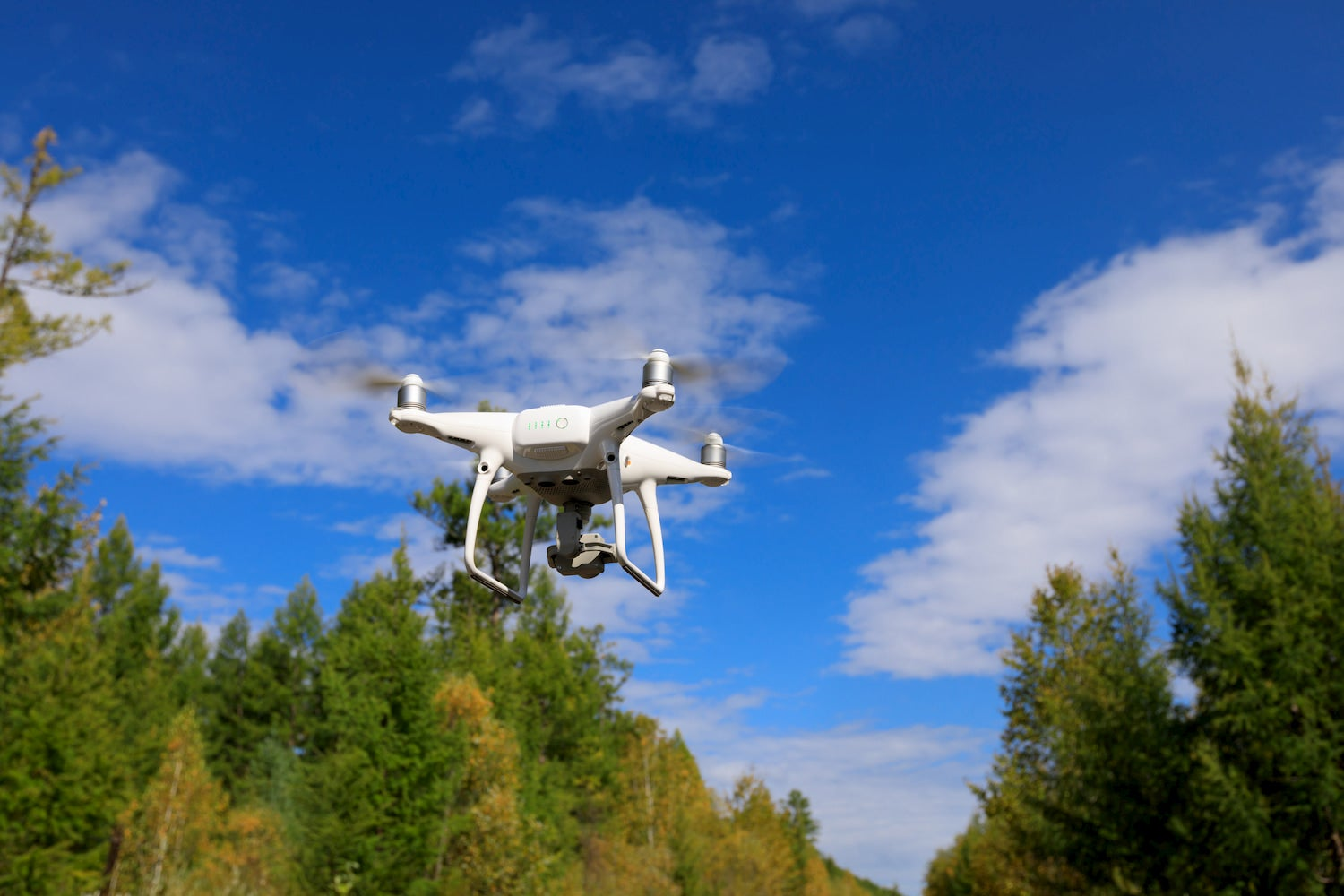 What You Should Know About Drones in National Parks
