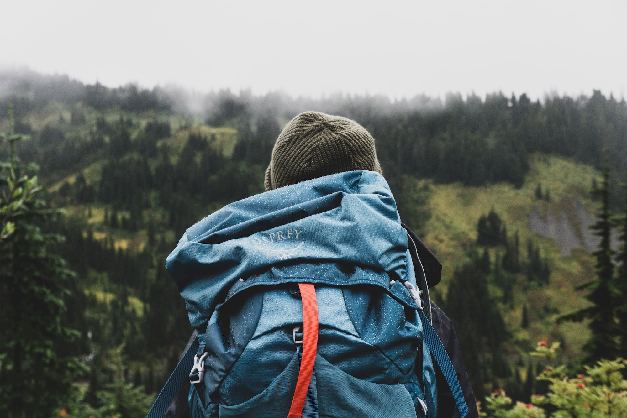 Woman with blue backpack overlooking a forested landscape.