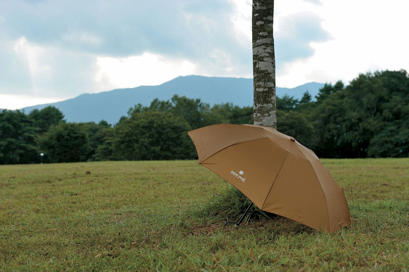 Umbrella in a field with a mountain landscape in the background.