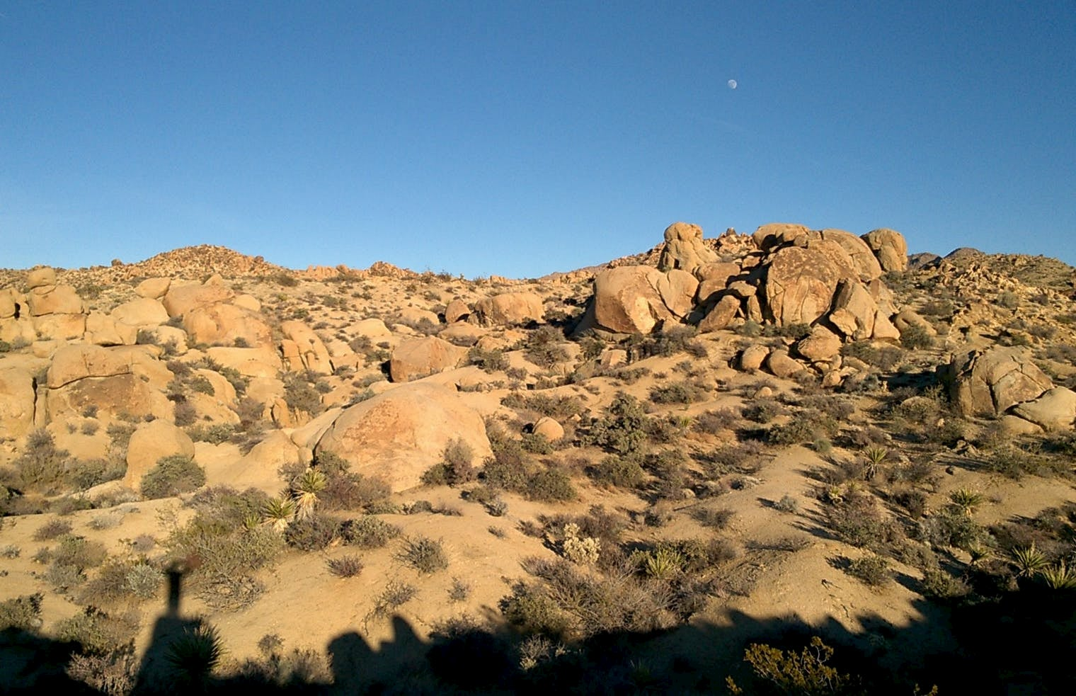 Moon in the clear blue sky over ht edesert with the shadow of a person and a landscape in the foreground.