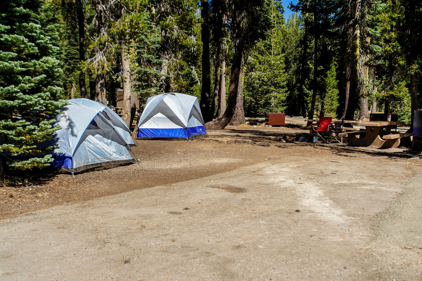 A campsite with tents and a picnic table set up in the forest.