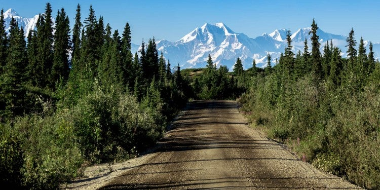 dirt road with denali in the background