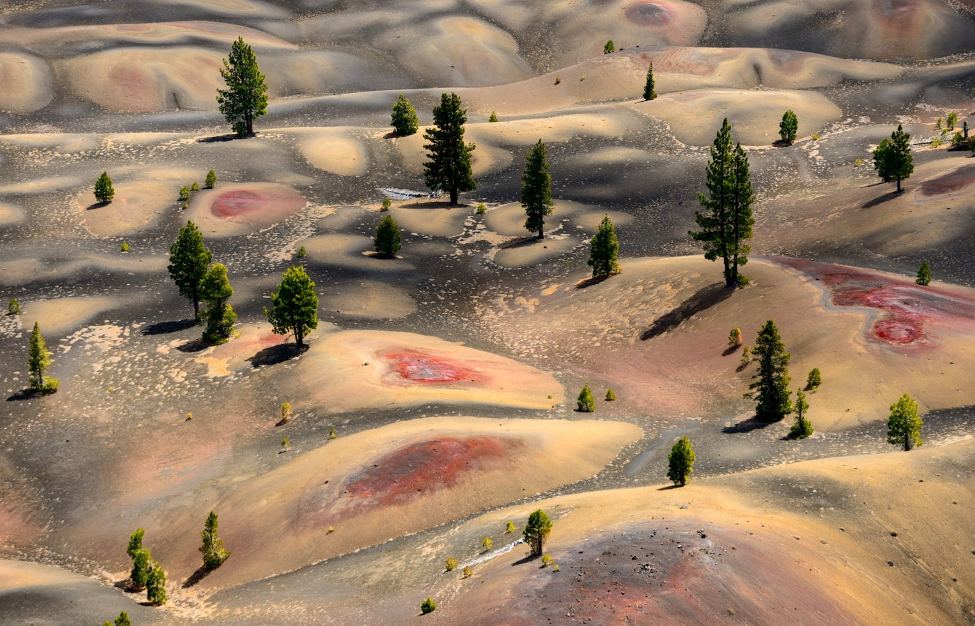 Aerial image of bumpy hills with red patches and sparse pine trees.