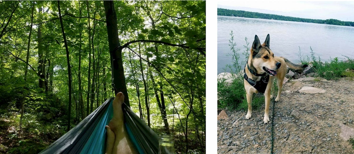 side-by-side photos of a man in a hammock and a dog by the water