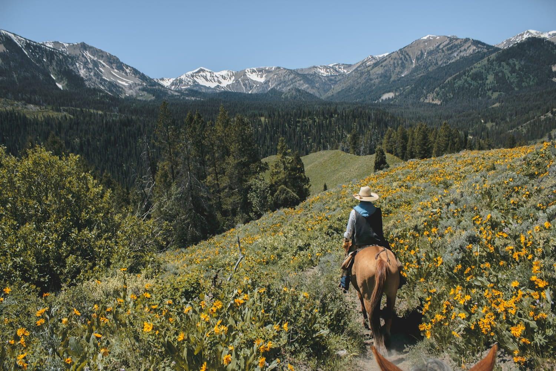 horseback rider at grand teton national park