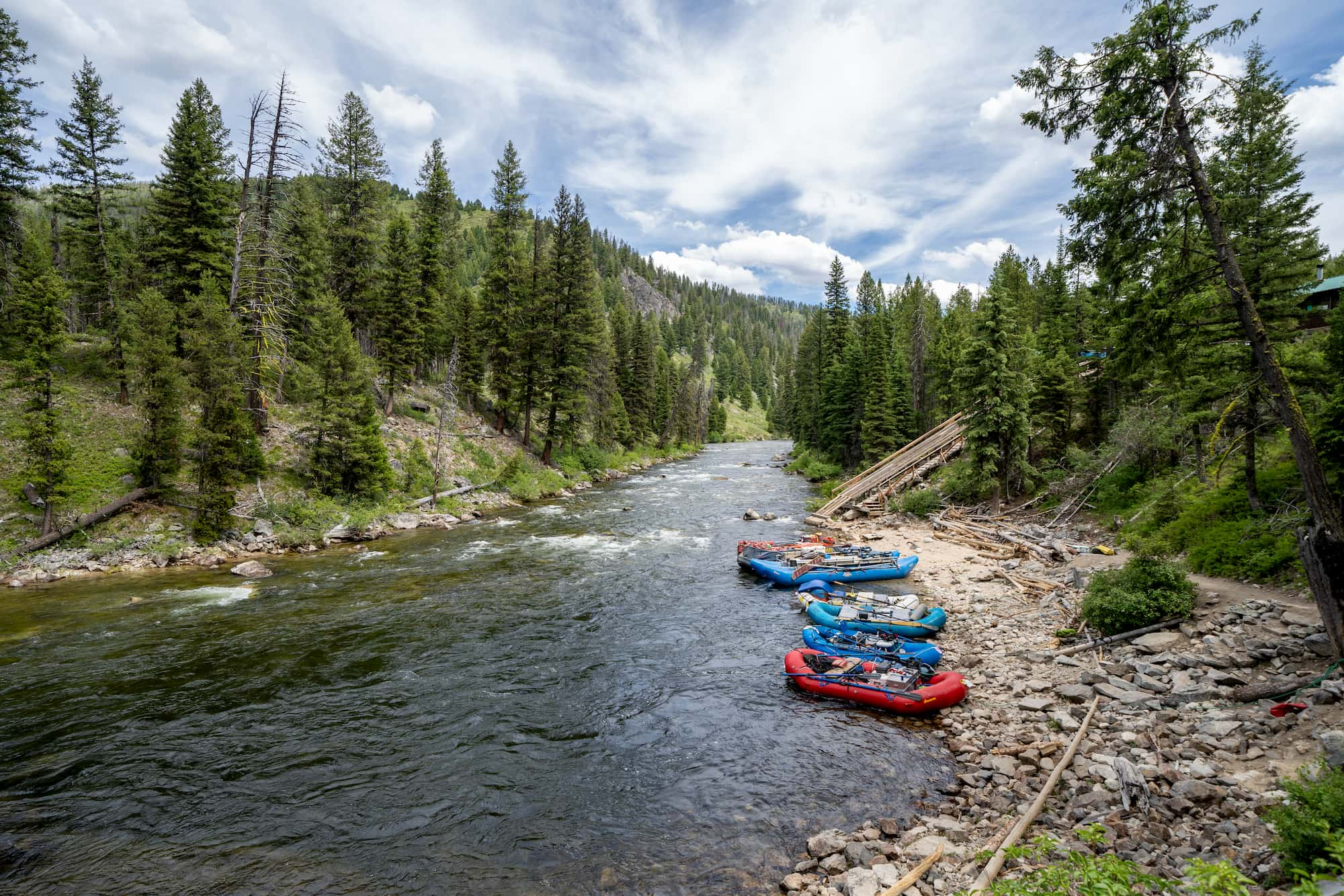 group of rafts on river bank in forest