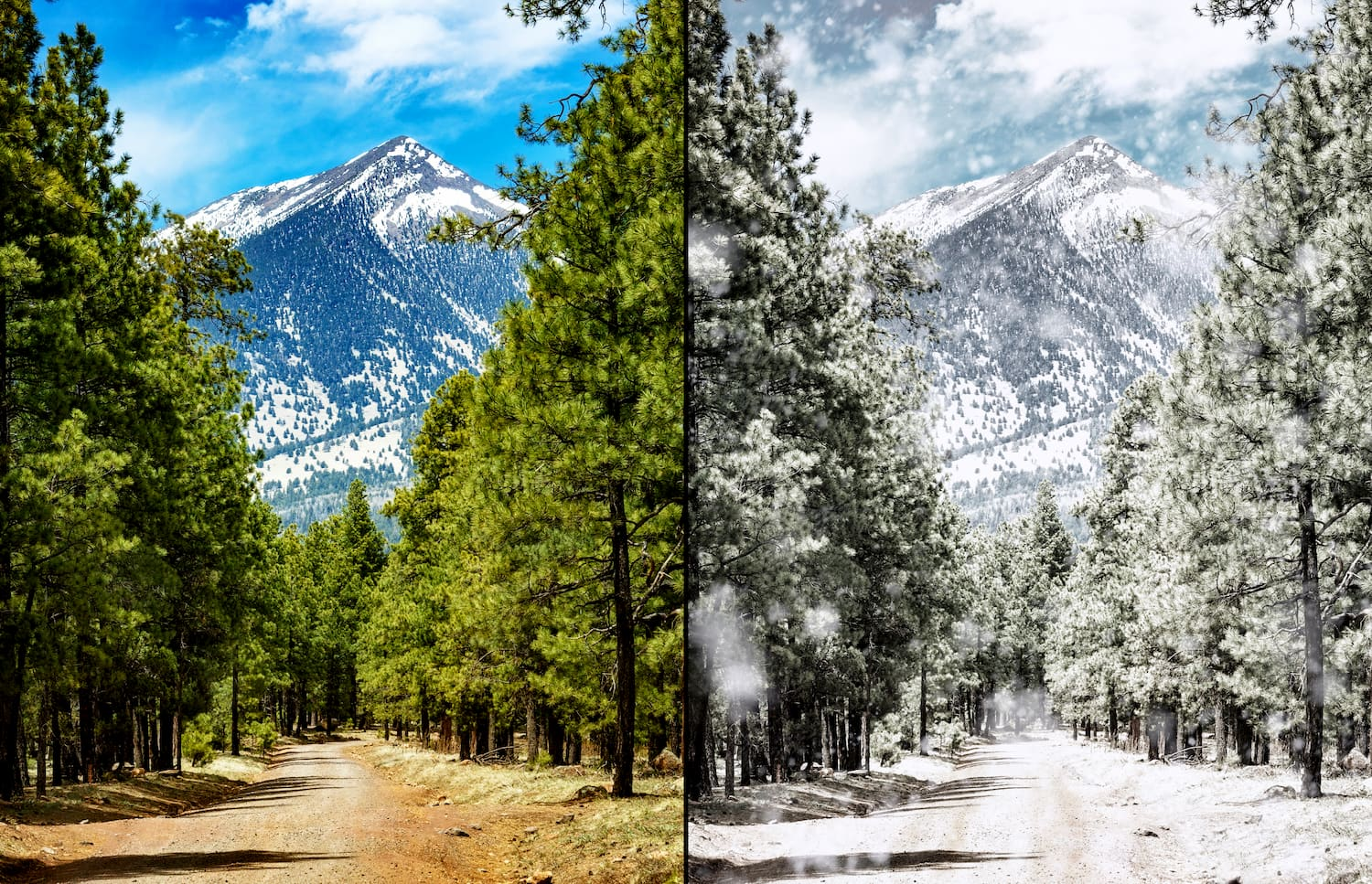 side-by-side comparison of flagstaff in summer and in winter