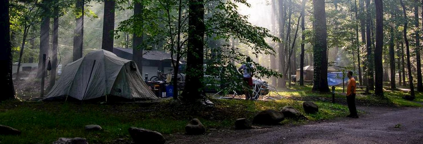 Campsite in the woods with sunlight shining through the trees.