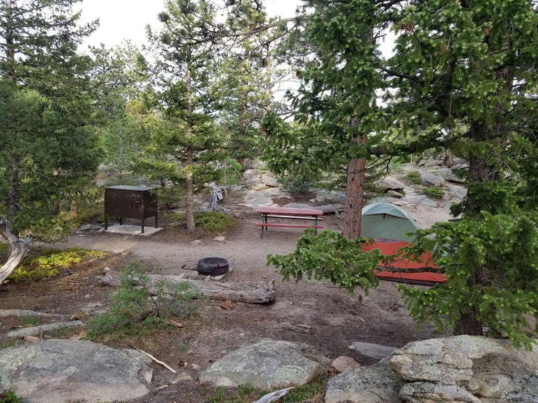 campsite with tress, tent, picnic table, and bear box