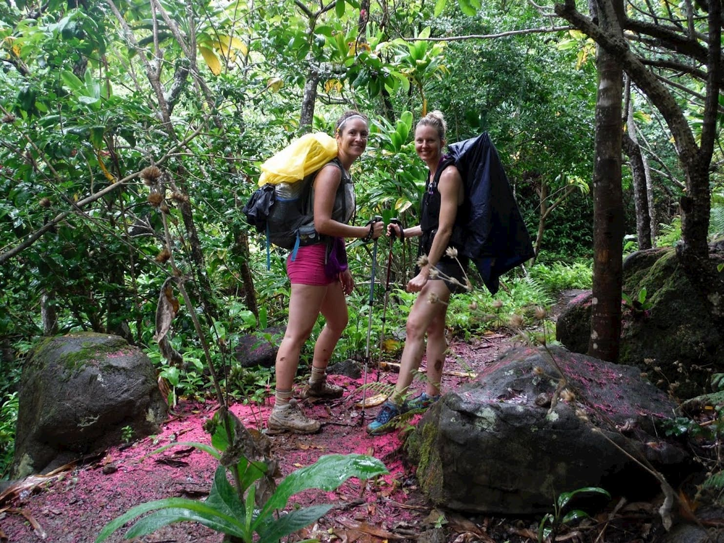 Two women backpackers hiking with trekking poles in the jungle.