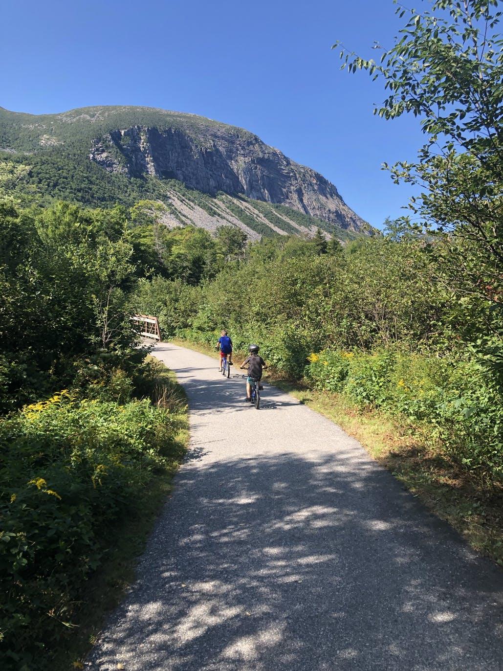 kids riding bikes on path through wilderness