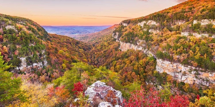 cloudland canyon at sunset during fall