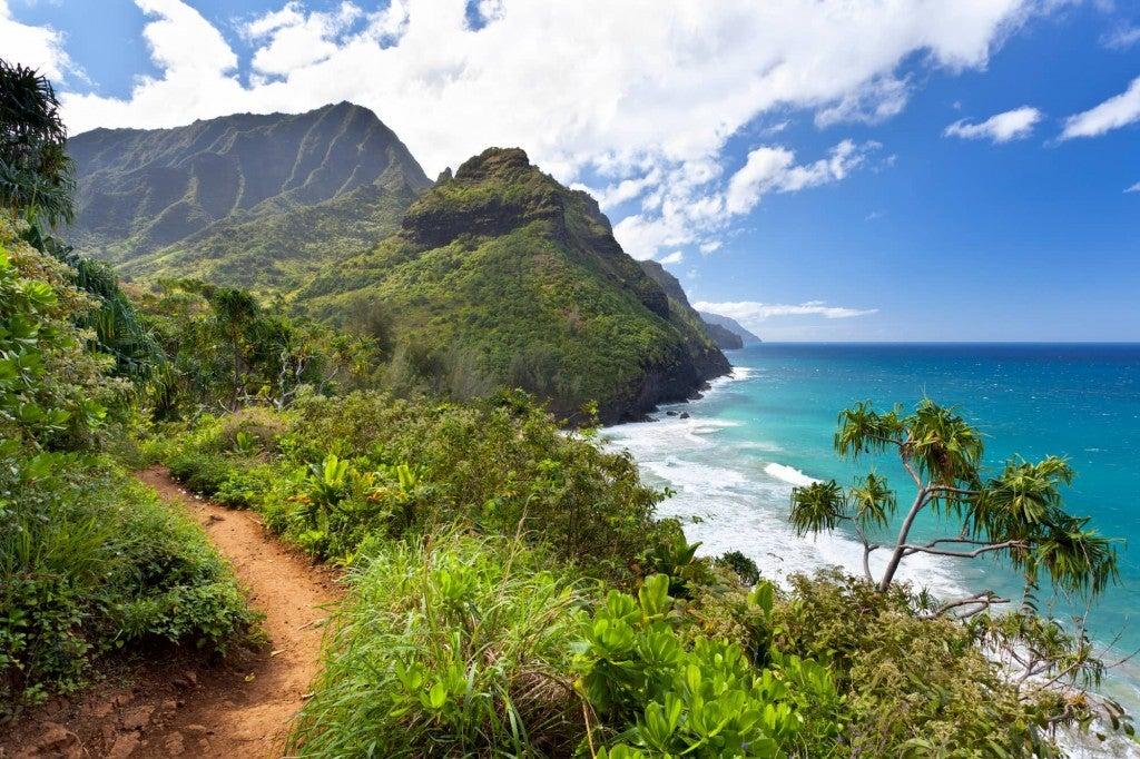 Lush Hawaaiian island landscape behind a coastal hiking trail.