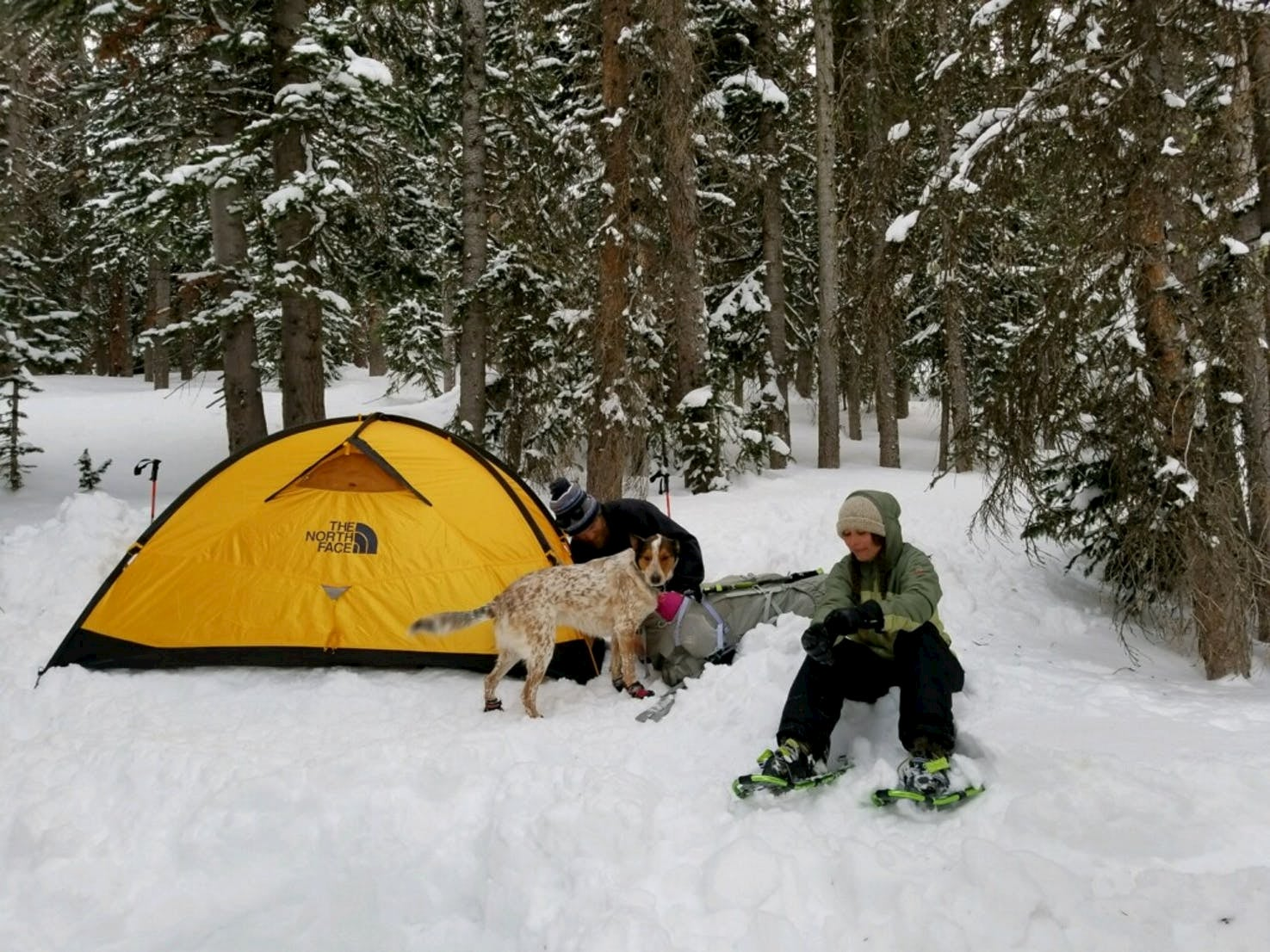 Women in snowshoes sitting beside yellow tent with her dog in the snow in State forest State Park.