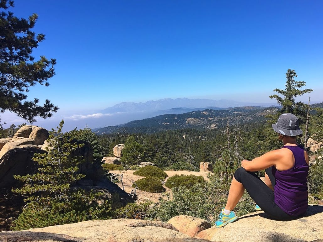 woman sitting looking out at view of pine trees