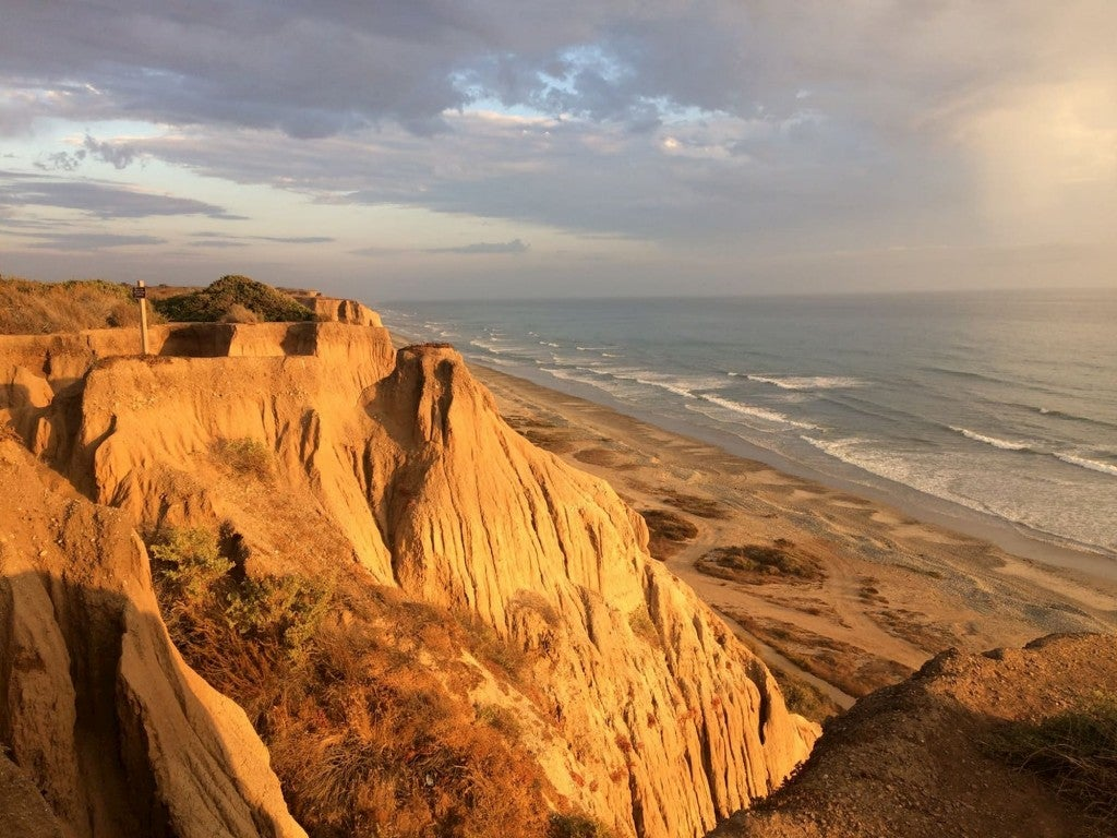 Viewpoint overlooking California's coastal cliffs and beach below.