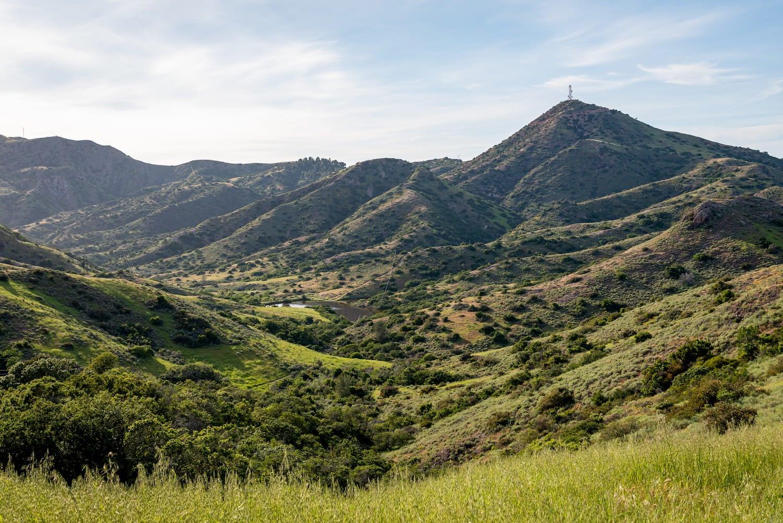 the hills of santa catalina island