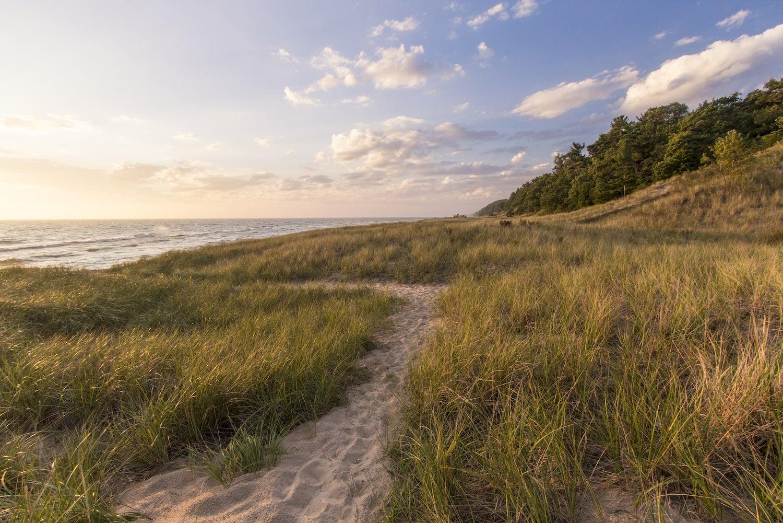 long grass and beach