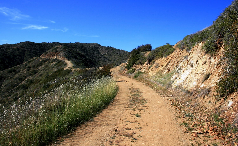 Catalina Island backcountry