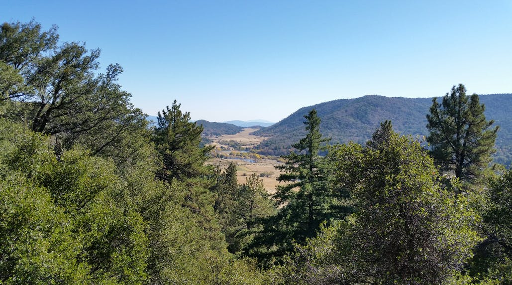 view of valley below from trail near Observatory Campground
