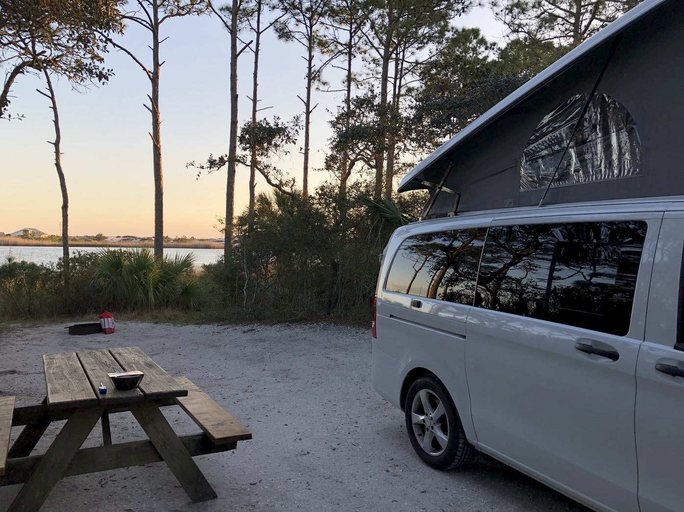 White van with pop top park beside picnic table and palm trees at coastal campsite.