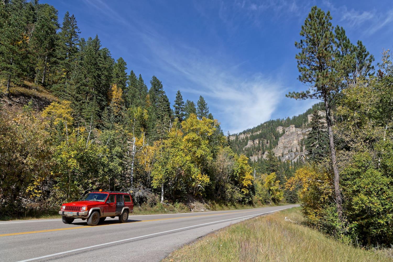 truck ddriving on road near deadwood