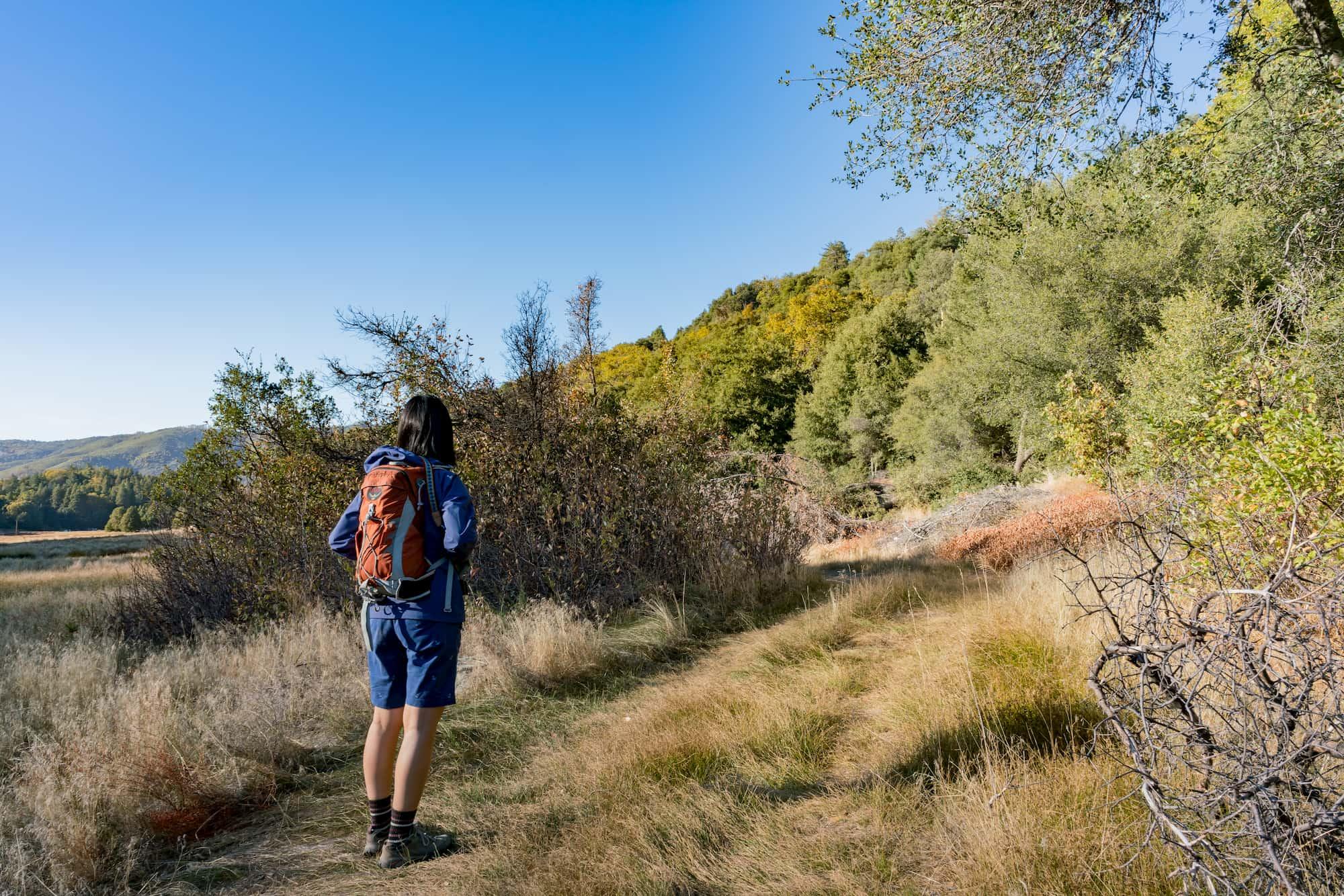 hiker on palomar mountain