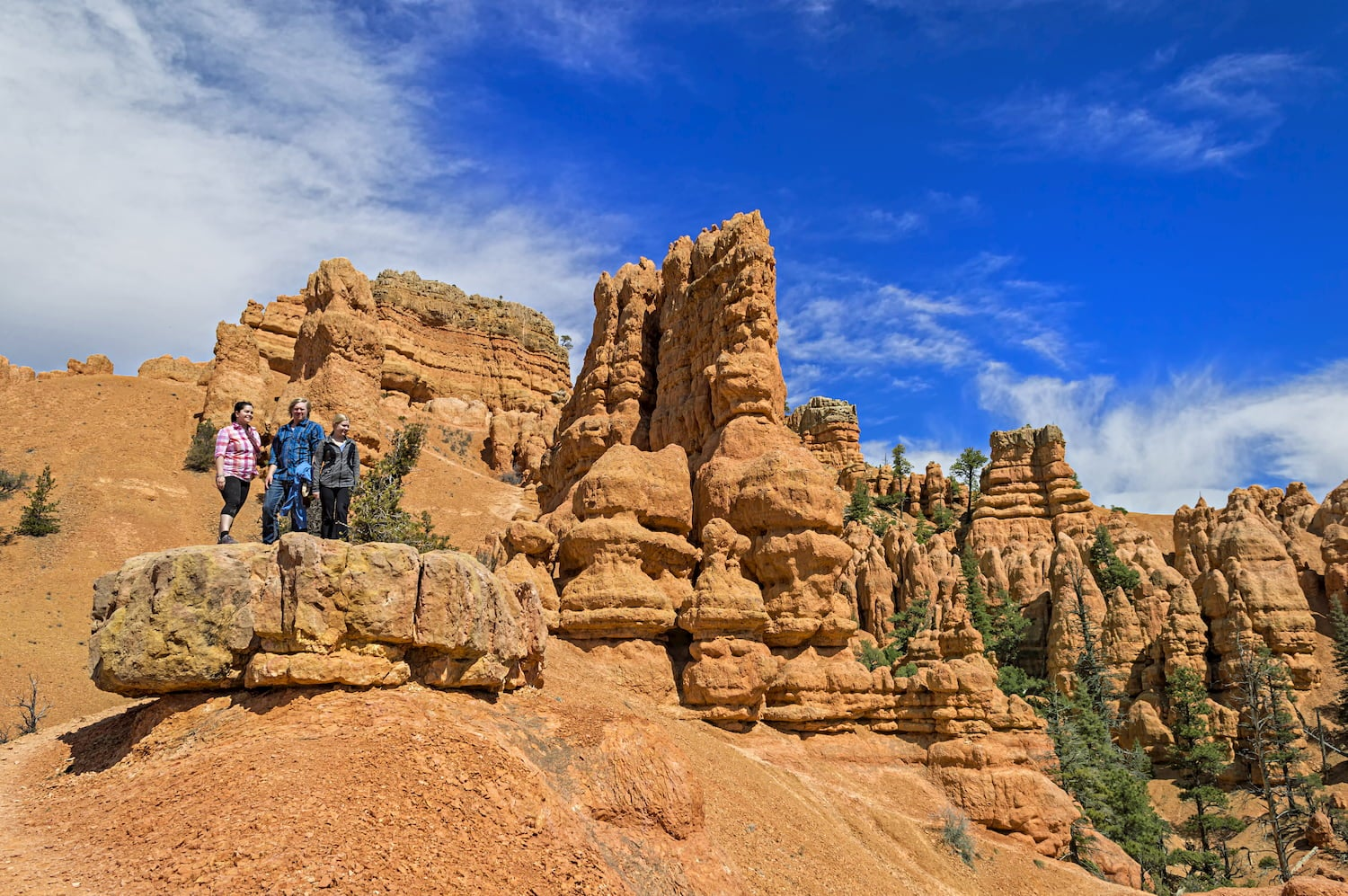 people standing on a rock at red canyon