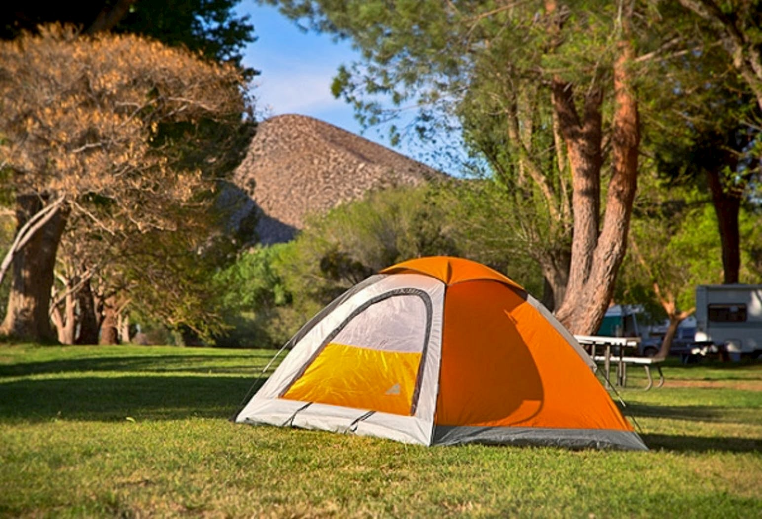 Orange tent set up on green lawn below desert mountains.