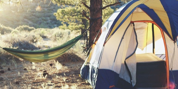 Free camping setup in a national forest.