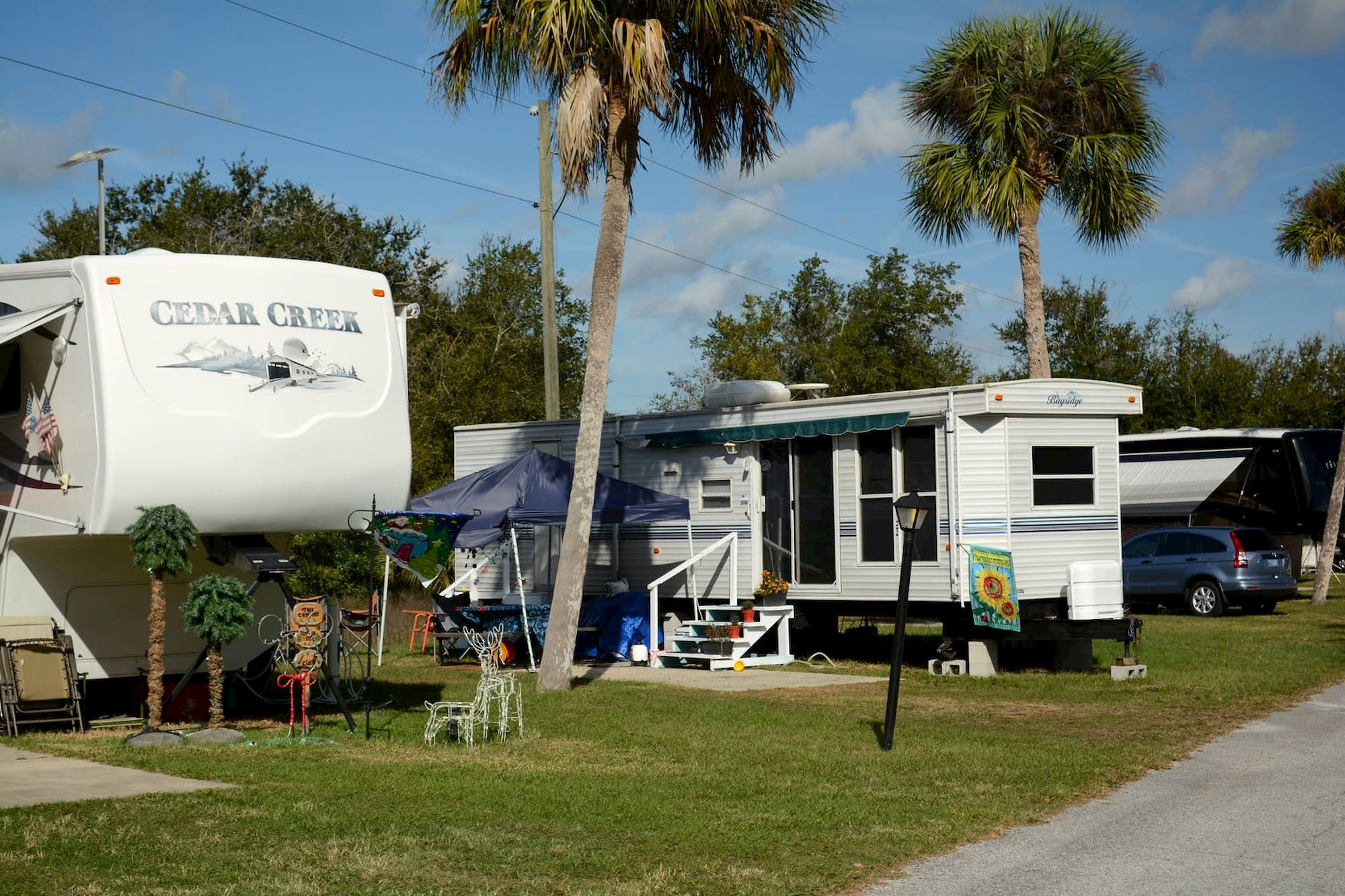 RVs and trailers parked in a row on green grass with palm trees in the background.