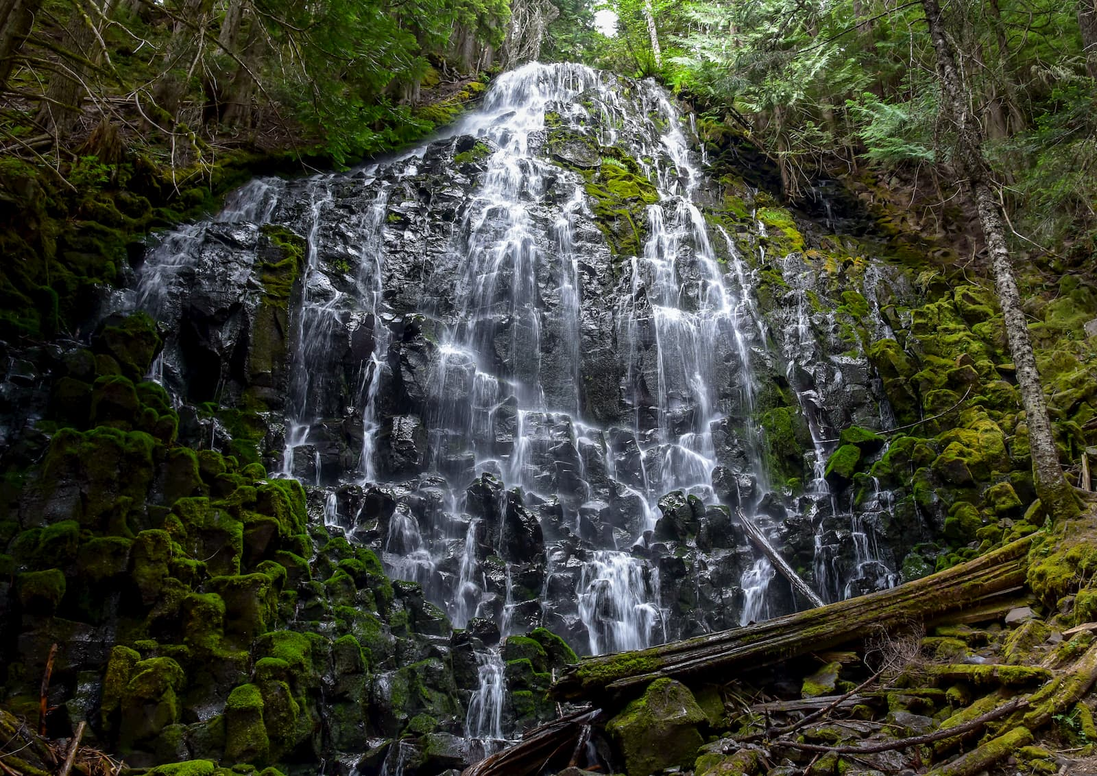 Water cascading down moss covered rocks in a forest above a bridge.