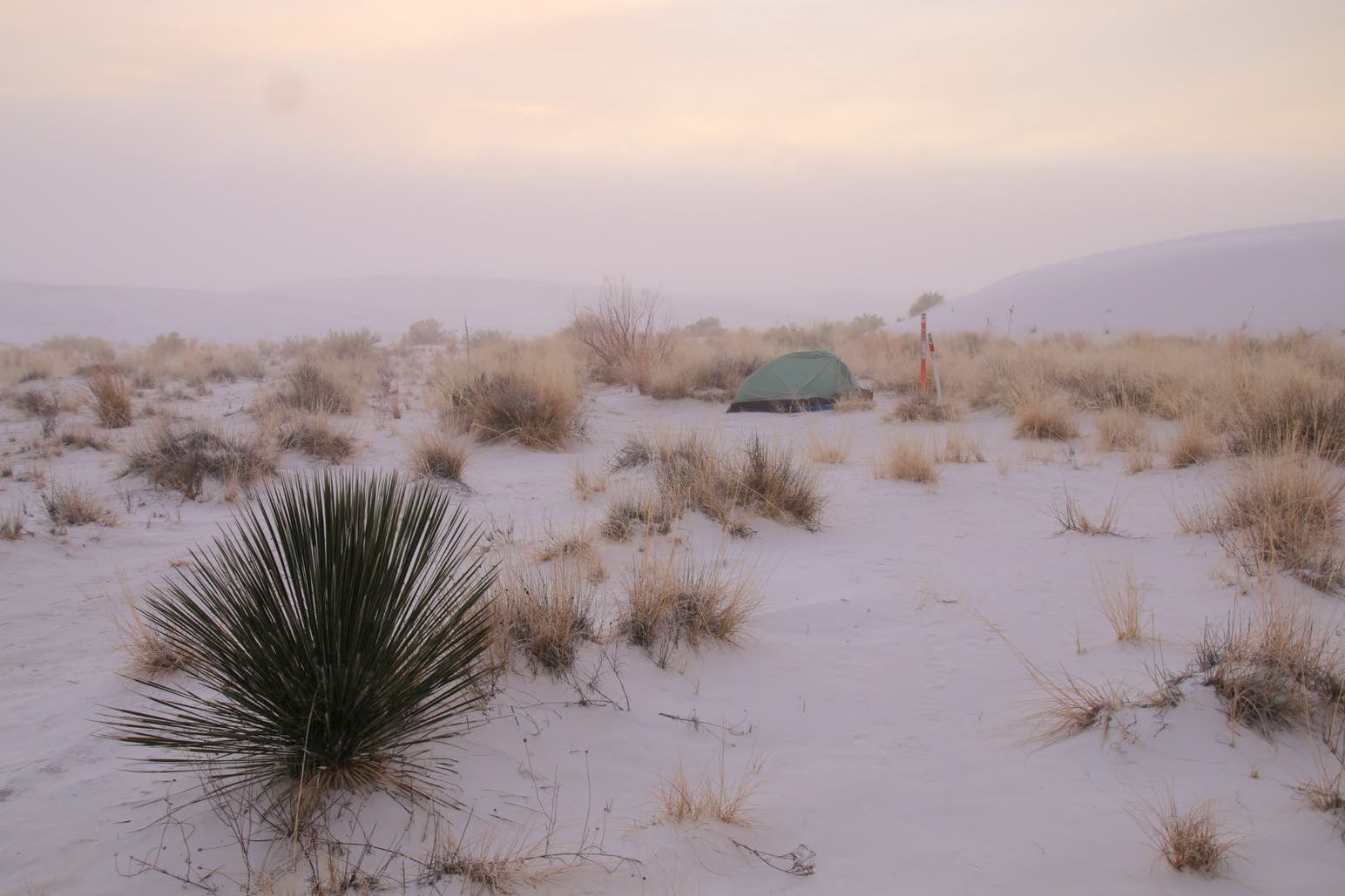 A small tent within the fog at a campsite in The Sands National Park.