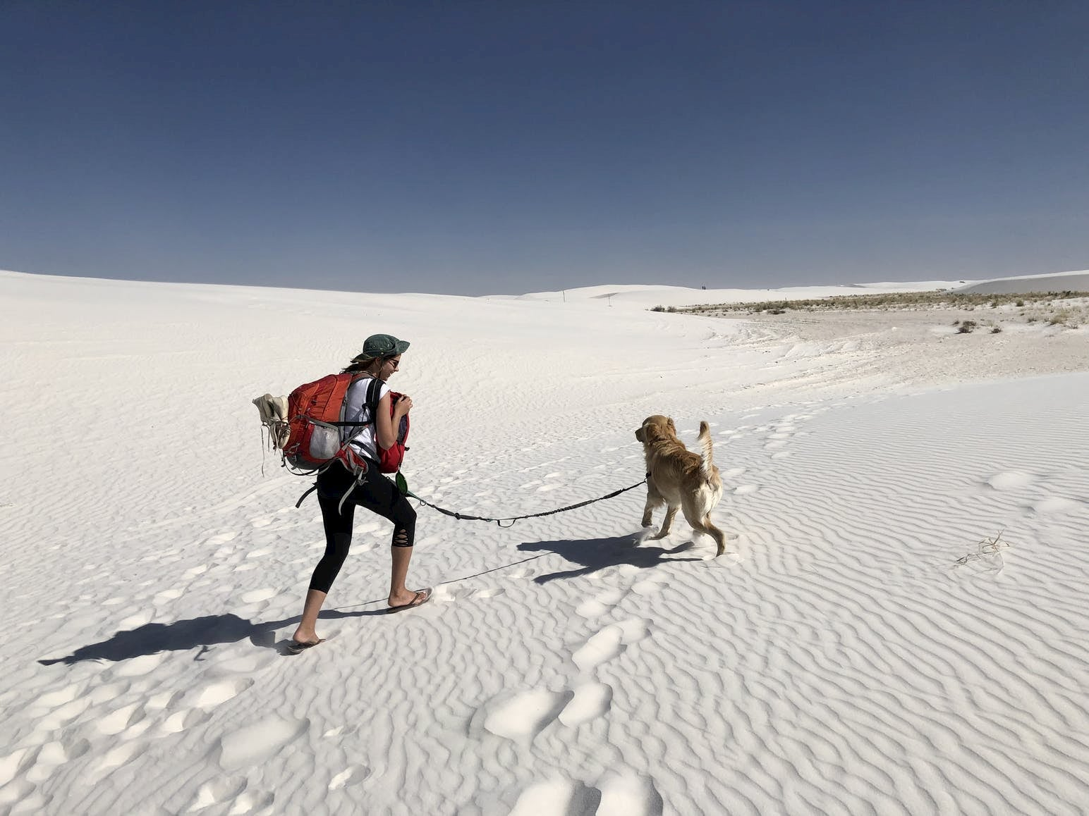 A girl and her dog walking to a campsite in White Sands National Park.