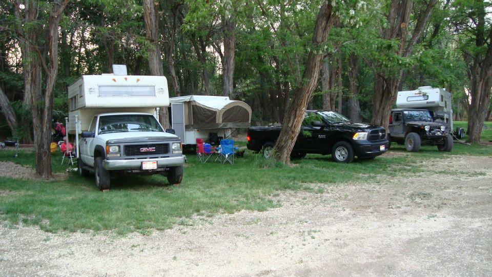 rvs parked in between trees