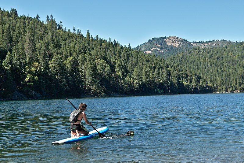 stand-up paddleboarder with dog in lake