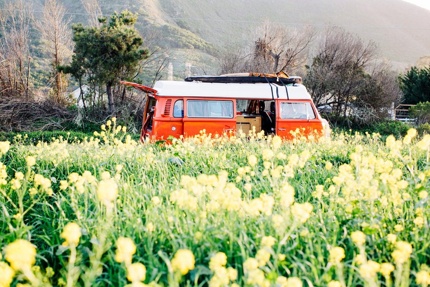 Orange camper van in a field of wildflowers.
