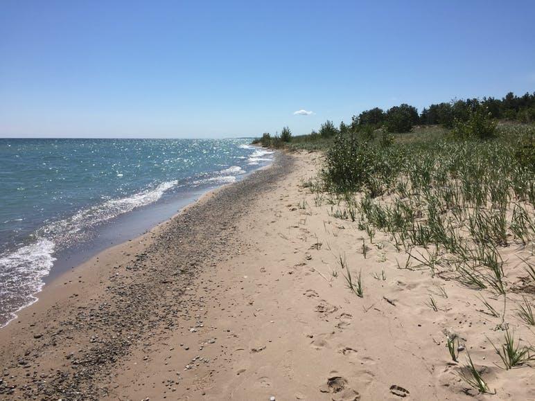 beach at midday