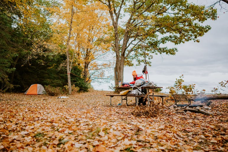 picnic table and tent setup at fall, with leaves covering the ground