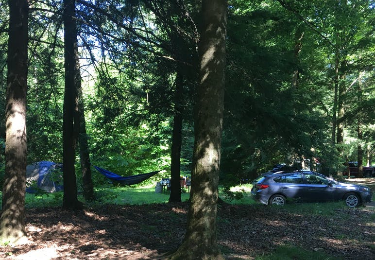 tent, car, and table set up at forested campsite
