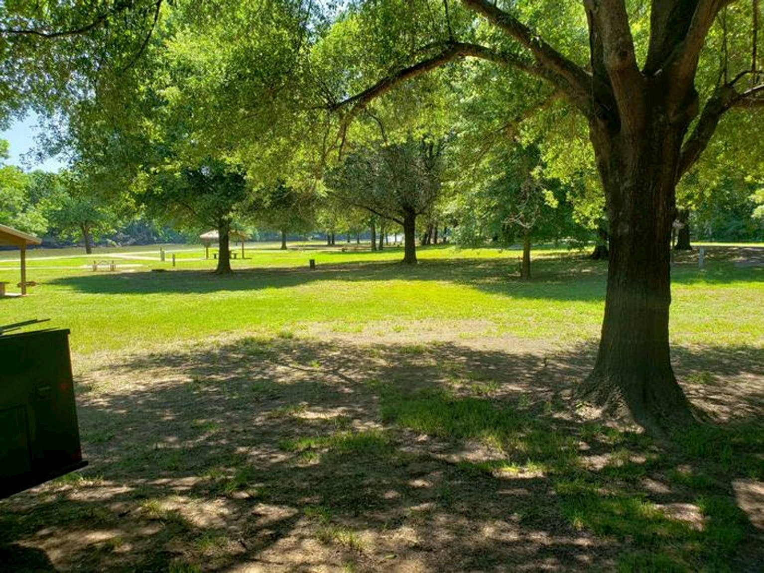 Bright green lawn with trees planted around the perimeter at Clear Creek Campground.