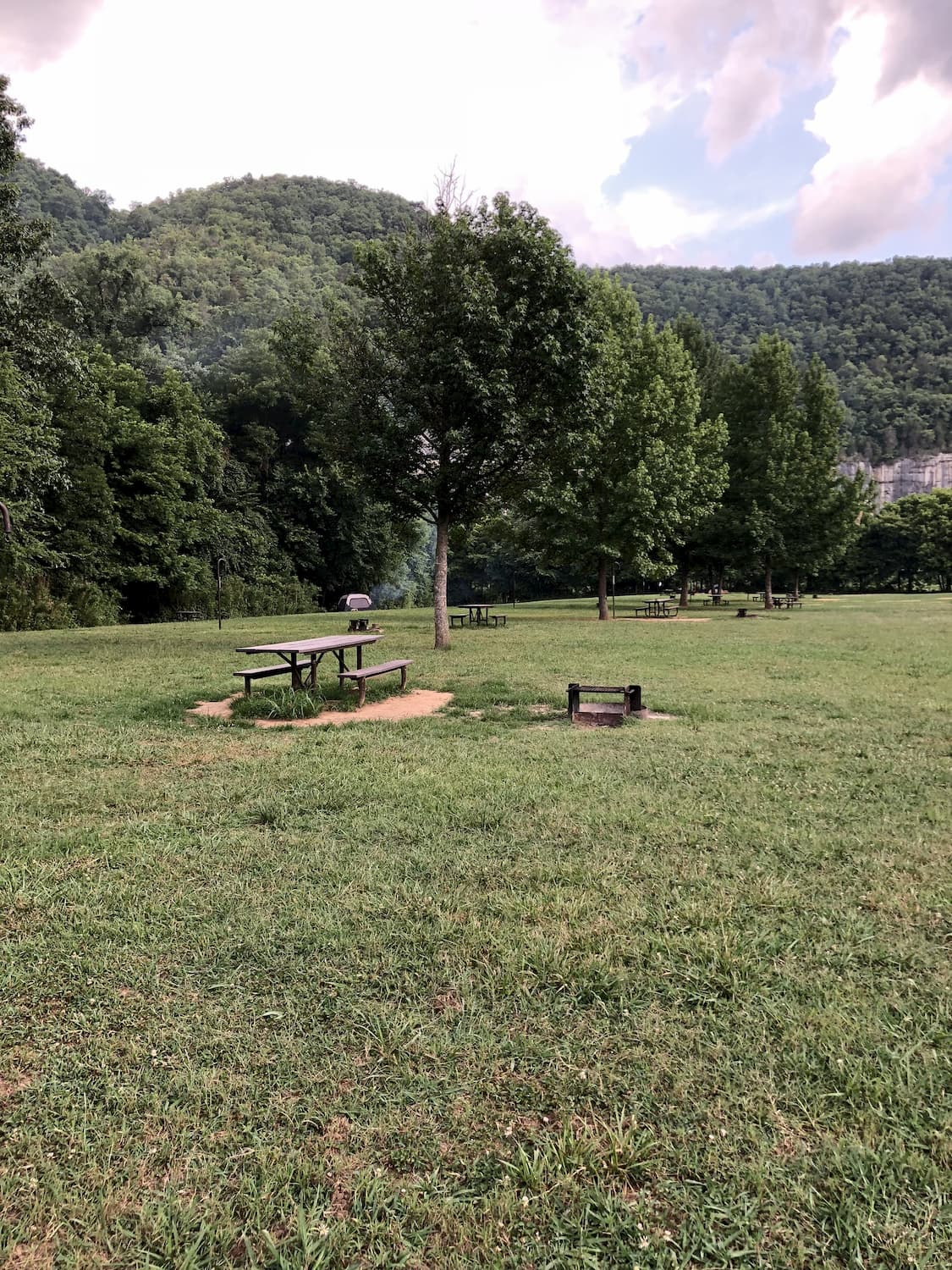 Campsite with picnic table and fire ring at Steel Creek Campground.