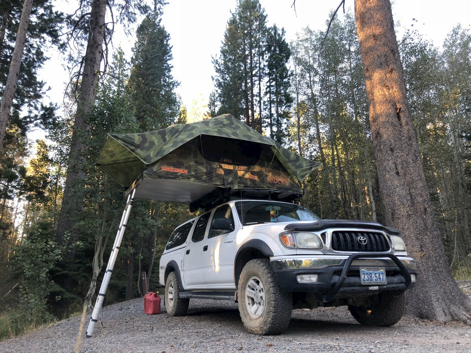 Large white SUV with rooftop tent set up in forested campsite.