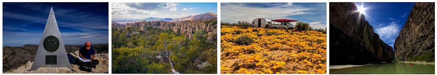 Photo collage of the Chihuahuan Desert including wildflowers and rock formations.