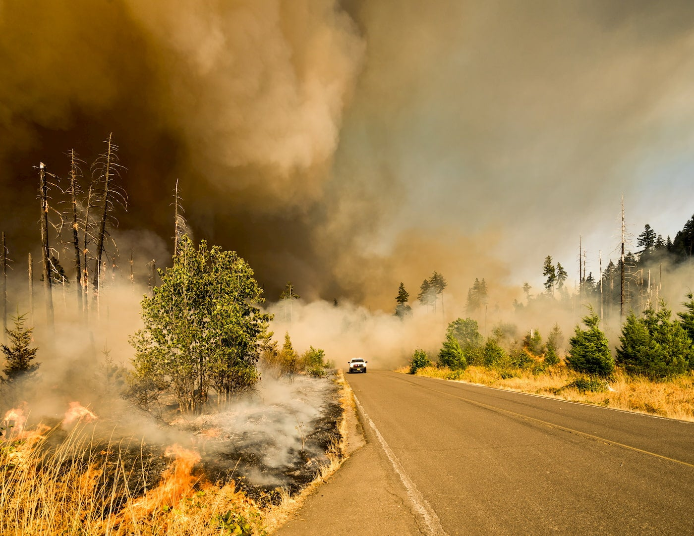 Camping closures as wildfires rage on the west coast. Wildfire cloud above a road in Oregon.