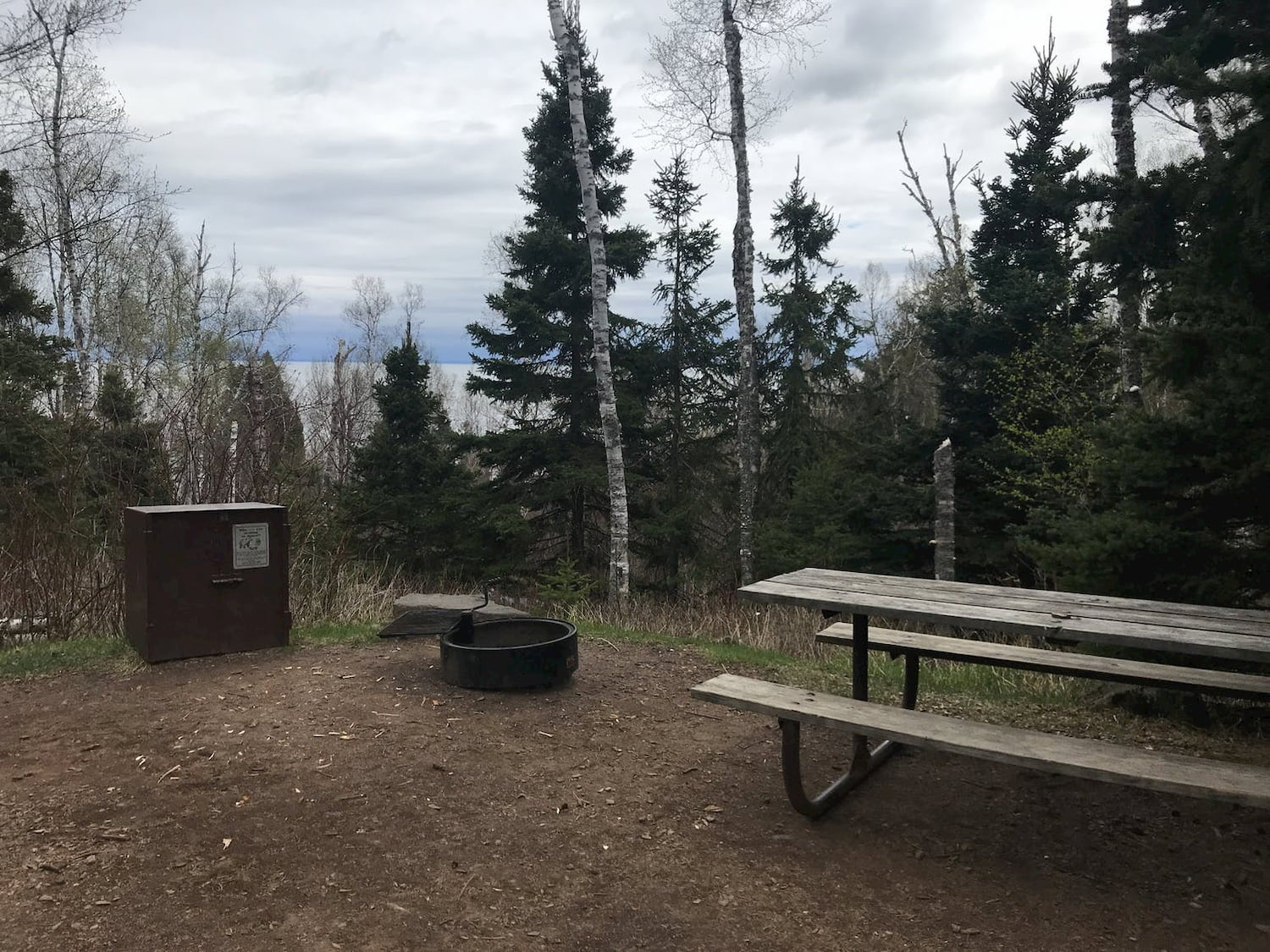 picnic bench, fire ring and bear box at campsite
