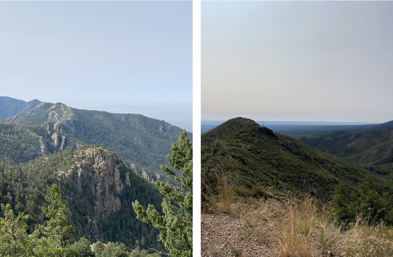 side by side images of cibola national forest